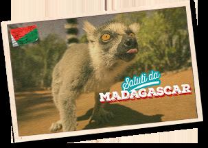 Vieni in Madagascar